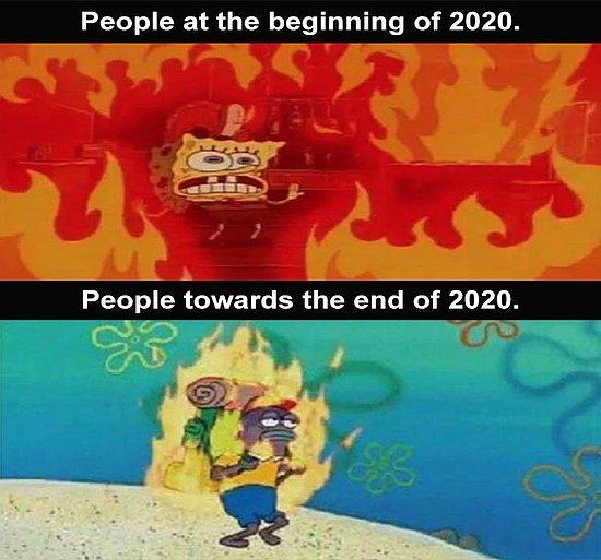 20260.jpg